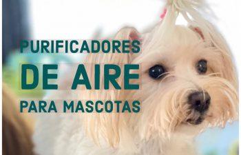 purificadores_aire_mascotas